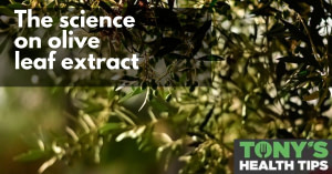 Does olive leaf extract cure cancer?
